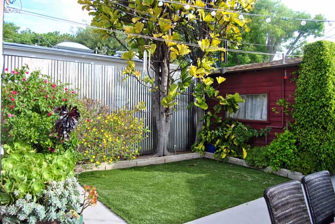 build-a-backyard-privacy-fence